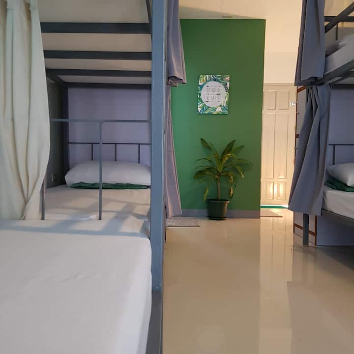 Green Turtle Backpackers Guesthouse - Dorm Bed 4