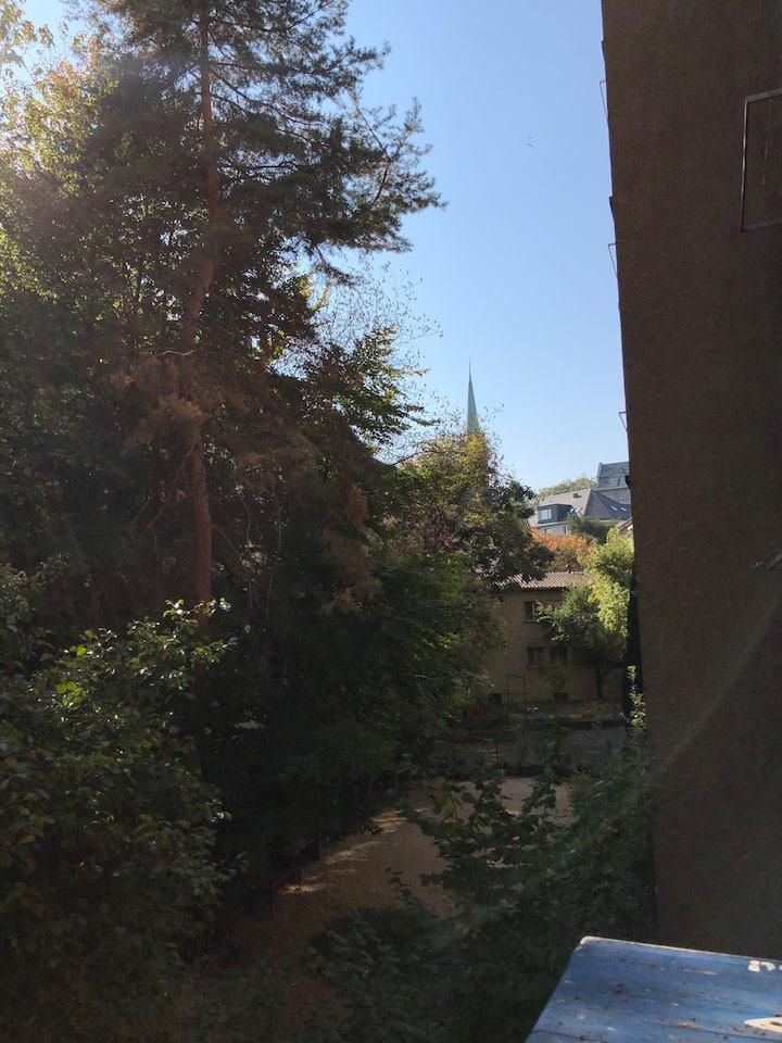 Zürich 3, schönes/gemütliches Zimmer 1