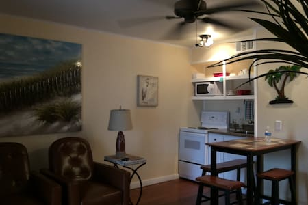 3242 Furnished Beach Front Condo - Corpus Christi
