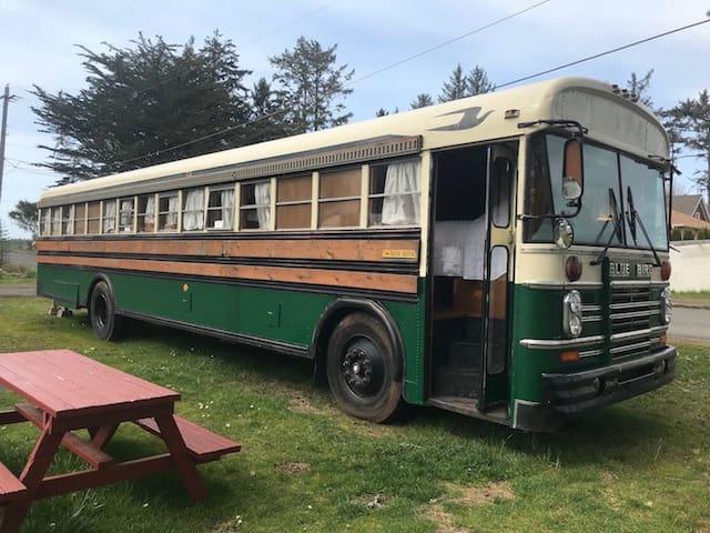 The Bluebird Luxury Bus