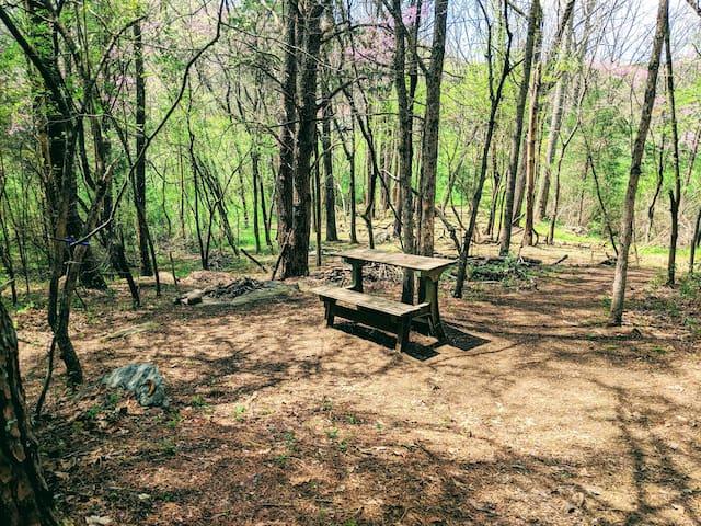 Enchanted Rock-Garden Campsite