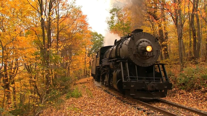 Great Smoky Mountain Railroad - full service dining car.  Reservations required.