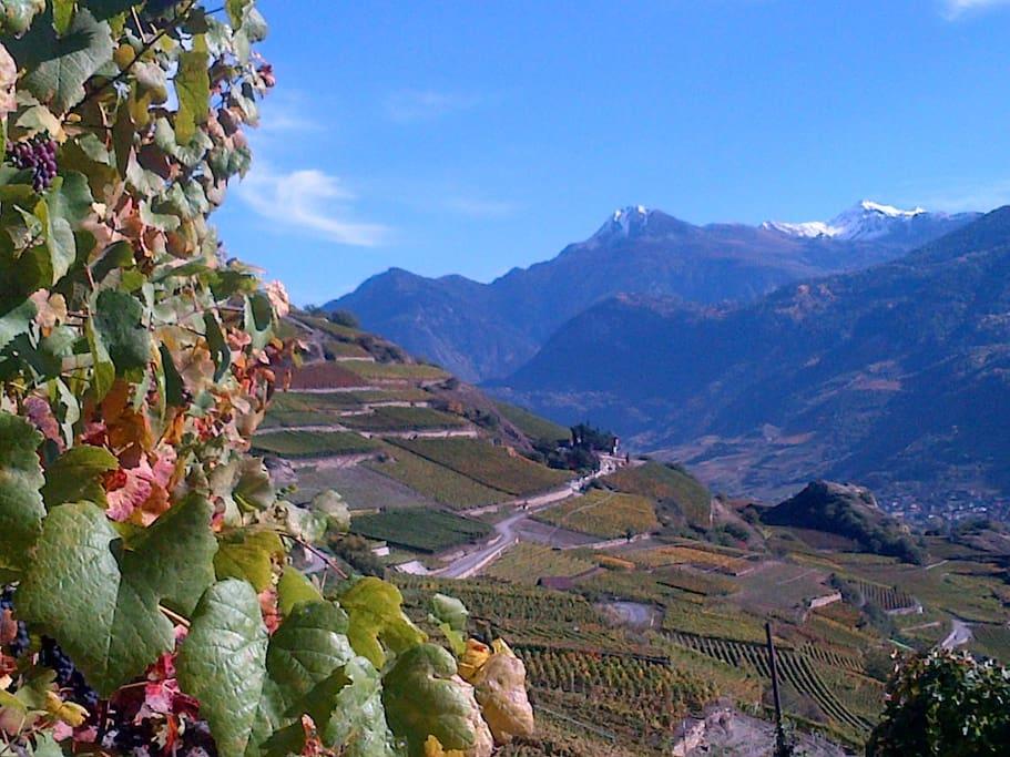 Herbst im Rhonetal bei Sion