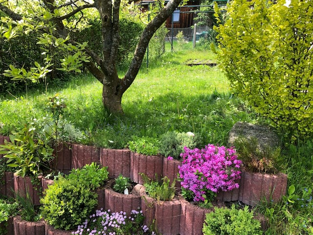 Lovely 7 beds with large garden in Black Forest