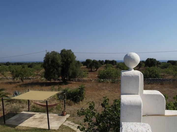 panoramic torretta at 2 km. beaches