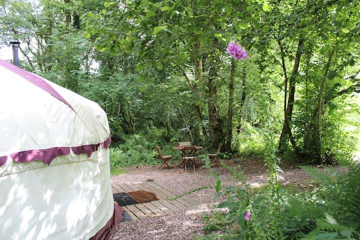 Peaceful Woodland Yurt in the Devon Countryside - Devon