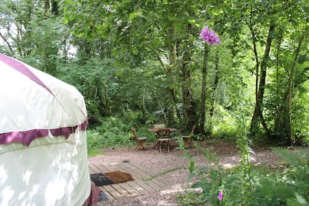 Peaceful Woodland Yurt in the Devon Countryside - Devon - Rundzelt