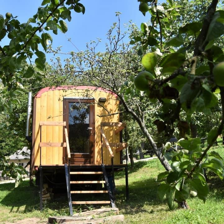 """Tiny House """"Peer"""" op naturisten camping"""