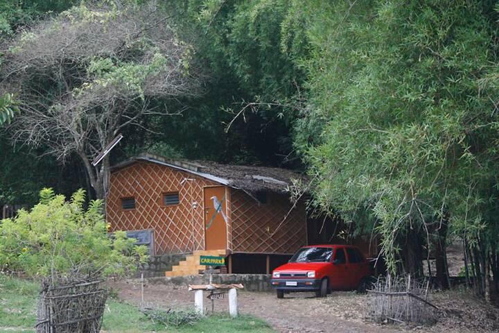 Bamboo Cottage - Masinagudi - Byt