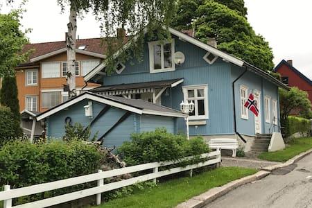 Historisk, nyoppusset hus ved Mjøsa (m/Badstue)