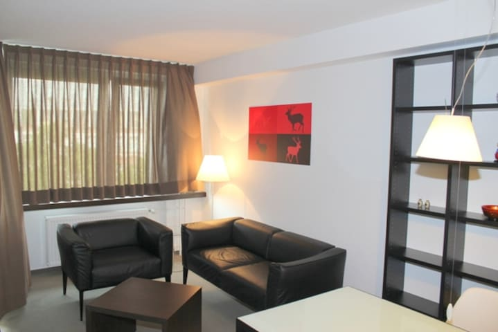 Great Apartment In Den City Center