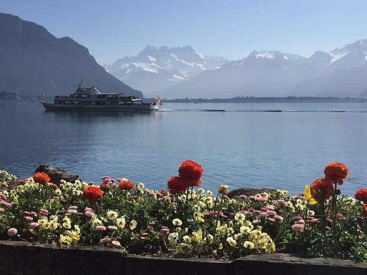Luxury Montreux Villa: amazing Lake Geneva view