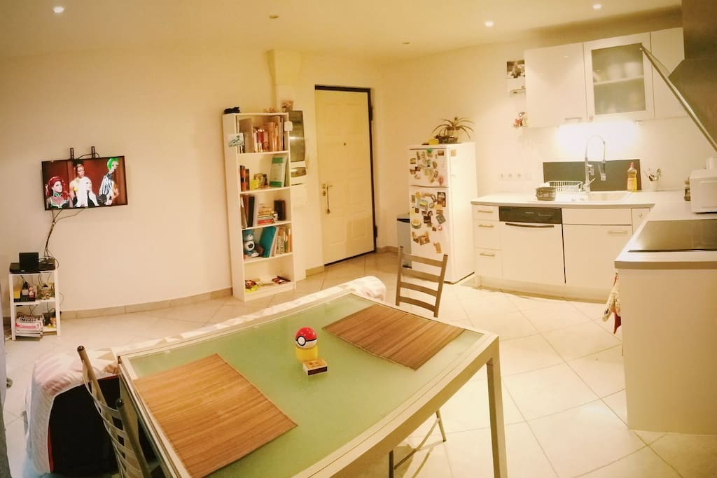 This one look of the living area. You can see the kitchen on the right, the dining room in the middle, and the entrance at the end. Behind the dining table there's a sofa bed and a TV. It has Netflix! :)