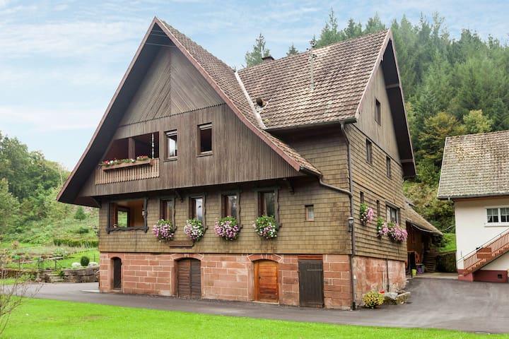 Spazioso appartamento a Holdersbach con balcone