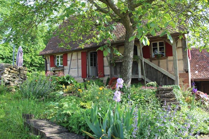 La maison Rouge Eglantine - Salenthal - Talo