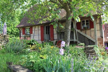 La maison Rouge Eglantine - Salenthal