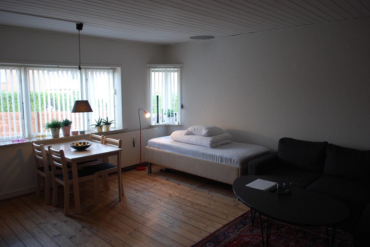 flot fisse værelse i esbjerg