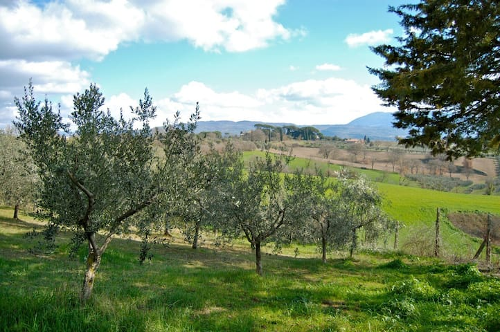 Villa in the heart of Umbria with view of Assisi - Civitella d'Arna - Apartamento