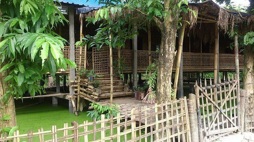 Bamboo made rooms surrounded with trees