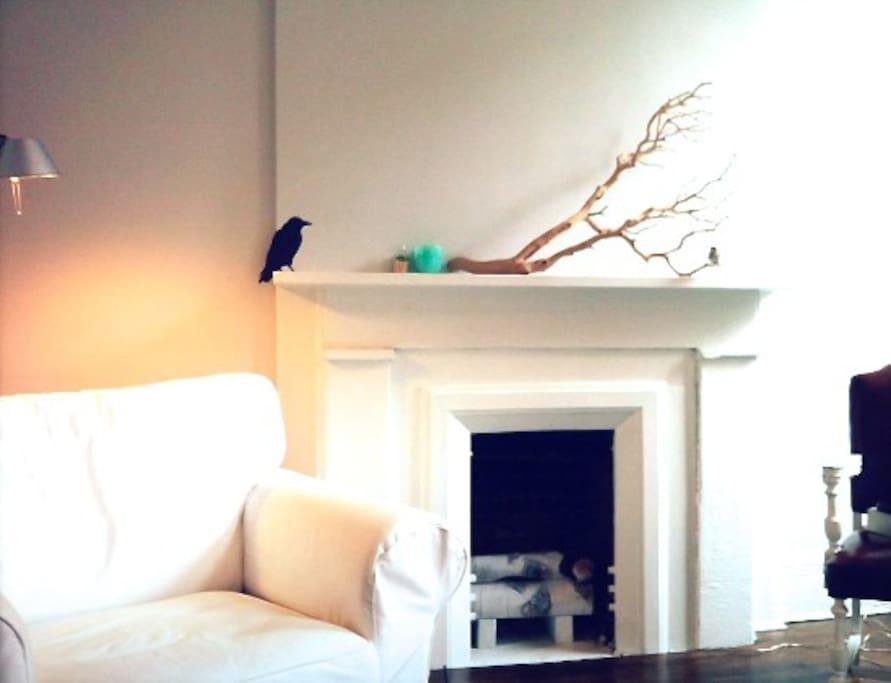 Gel insert birch log fireplace, living room
