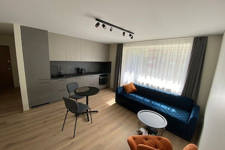 1 bedroom apt. in city center