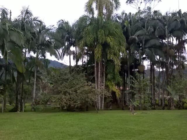 Encontro com a natureza