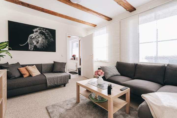 NEW - newly renovated apartment with netflix