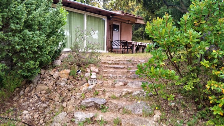 Olbia Holiday Home and Rooms