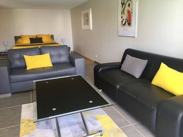 Bel appartement avec piscine privée et vue mer - Bastia - Apartment
