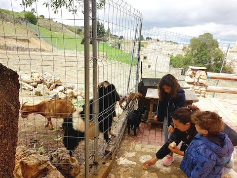 Alojamiento Cuenca con Animales de la Granja