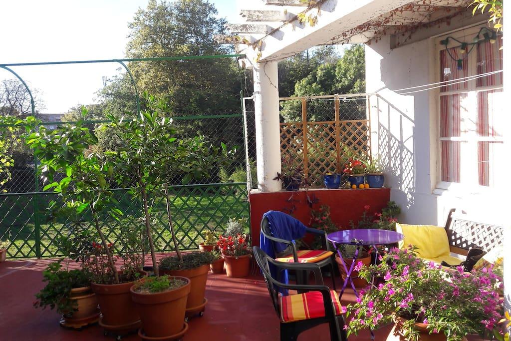 terrasse été/automne.