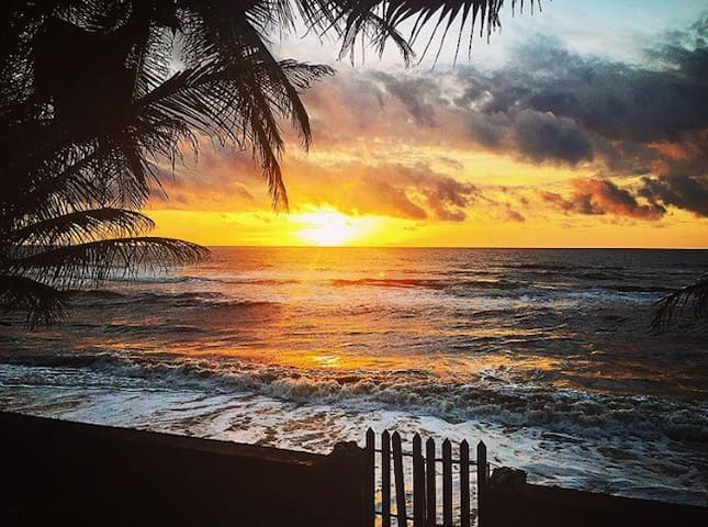 Caribbean Beachfront.