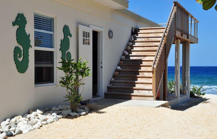 Hammock Moon - A Cayman Brac Gem!