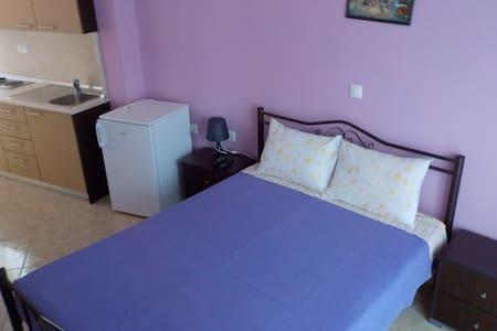 A beautiful apartment 1 - Metagkitsi