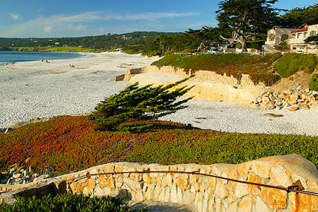 Charming Carmel Cypress Retreat - Carmel-by-the-Sea - Dům