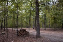 7 secluded acres