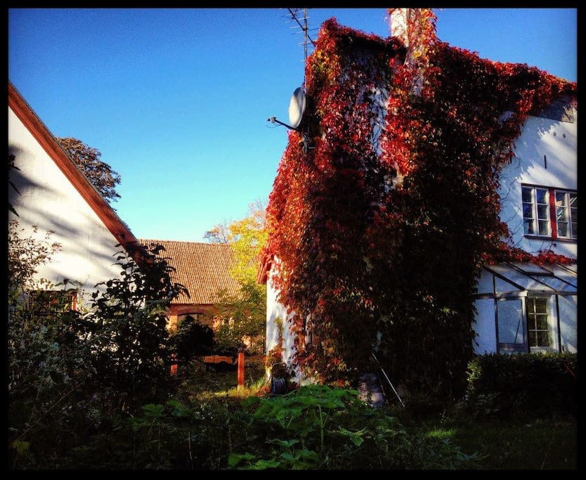 The fall has arrived and the wild wine slowly turns Guesthouse red.