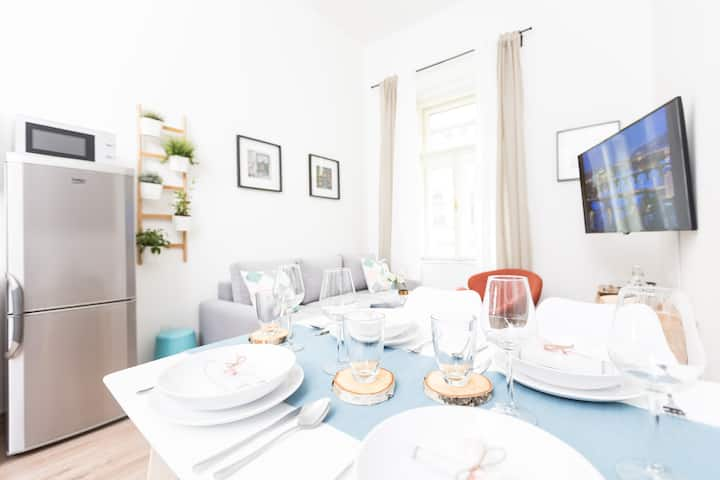 Apartment with NETFLIX close to Wenceslas Square