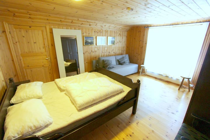The Valdres Room next to Jotunheimen National Park - Øystre Slidr - Flat