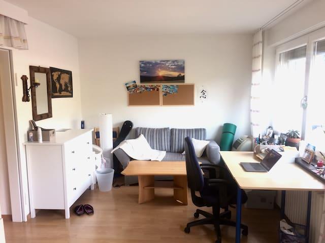 Wunderschöne 1-Zimmer-Wohnung im Herzen Freiburgs!