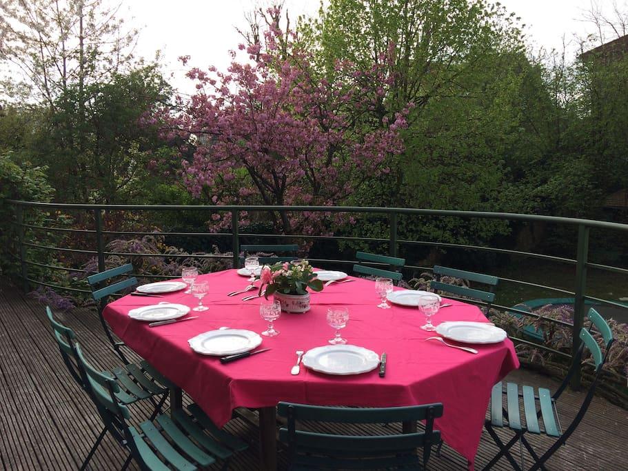 terrasse avec table sur le jardin , exposée au sud