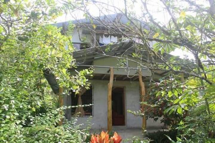 Casa Shantell