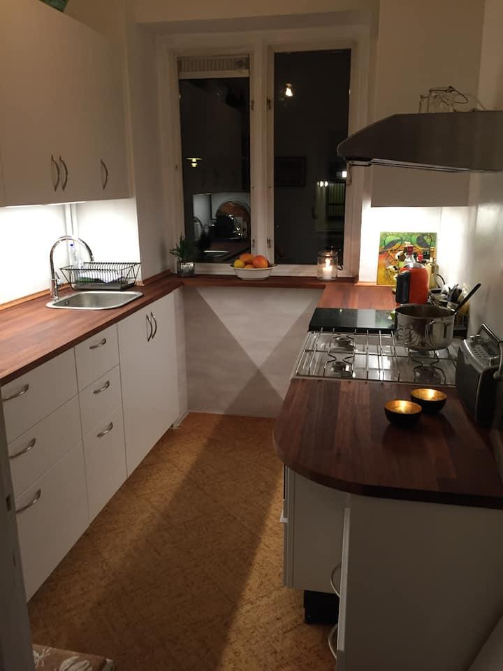 Cozy apartment with garden close to CPH