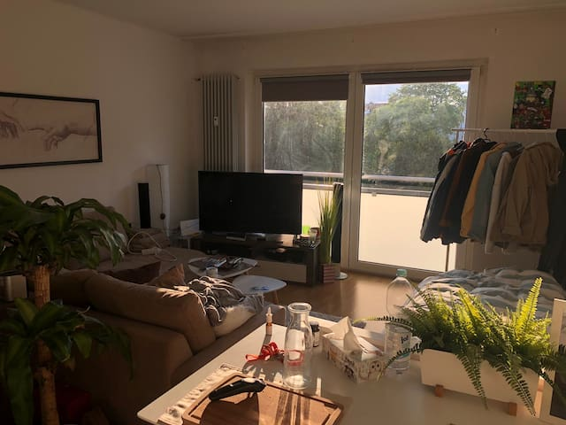 Comfortable, bright flat in FFM