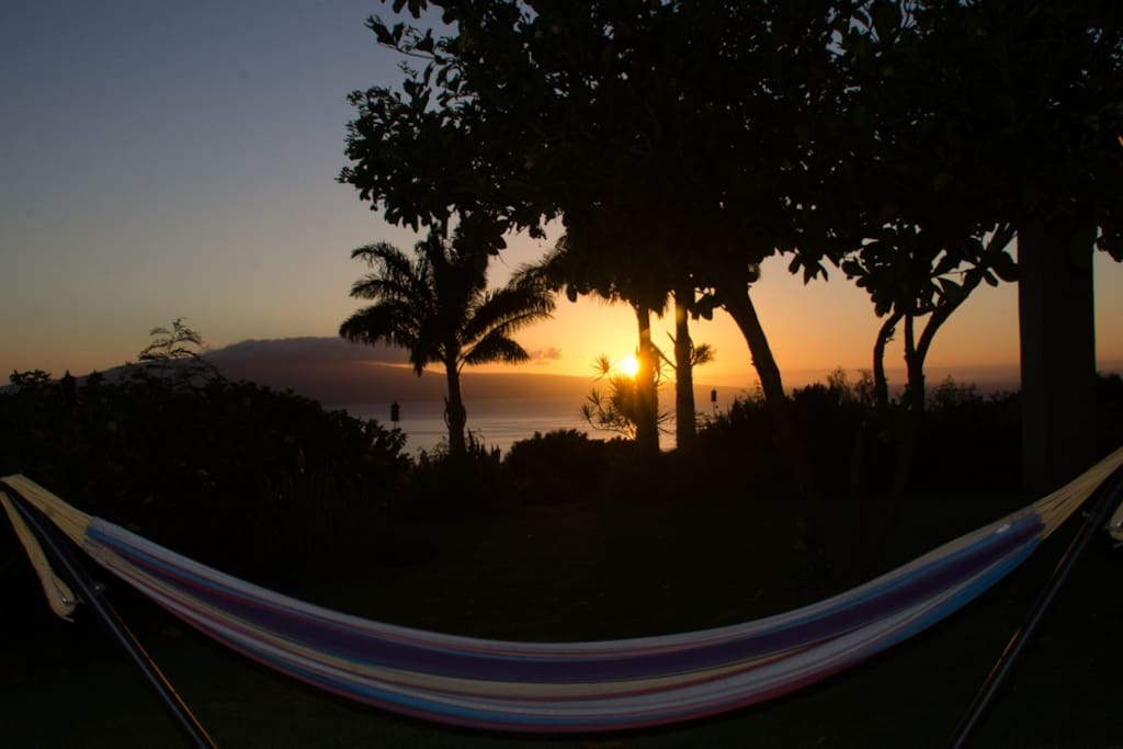 Sunset from the hammock on your lanai