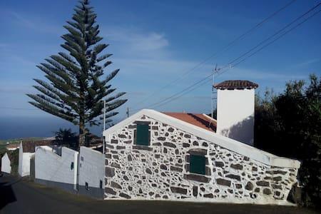 Casa da Araucária (Nordeste) - Dům