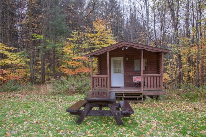 Camping Log Cabin in Beautiful Forest Setting