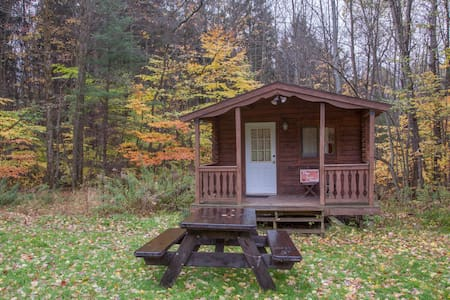 Log Cabin w/access to 20 mi. skiing& hiking trails - Freeville