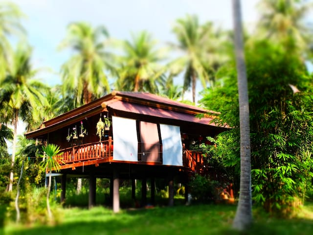 The CocoHome 2