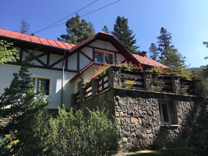 Spacious three-bedroom home in Sinaia